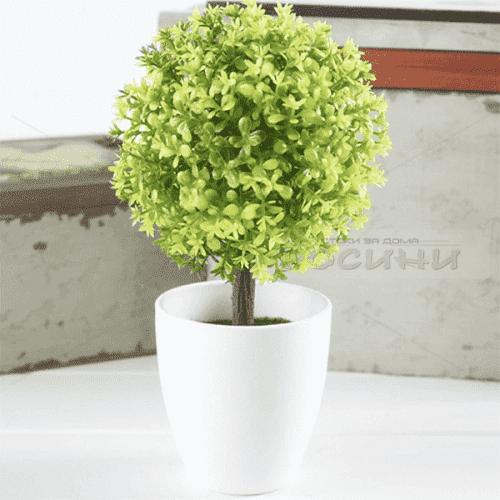 Изкуствено дърво в саксия Бонсай Чемшир/декоративни цветя
