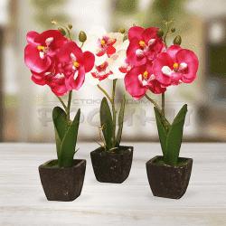 Мини орхидея в саксия/изкуствени цветя